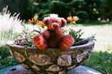 Geschenk Bär / Namensbär