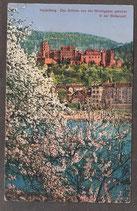 691...   (W-6900)   Heidelberg   -Das Schloss von der Hirschgasse gesehen-   (PK-00449)