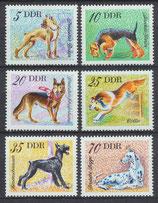 2155-2160 postfrisch (DDR-Hunde)
