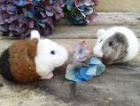 Meerschwein to do , DIY - Tüte mit original Meerschweinviech