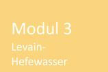 Modul 3 - Levain-Hefewasser, 26. Mai 2020