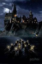 Harry Potter - In the Dark Poster 91x61cm