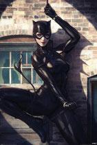 Catwoman Spot Light Poster DC Comics 61x91cm