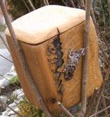 Holz Urne Wiedergeburt