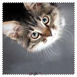 Essuie-verre Chat
