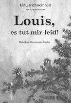 Louis, es tut mir leid! (Unterrichtseinheit)