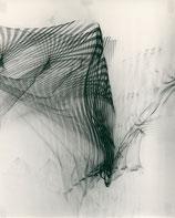 LIGHT REFLEX - ROTATION 3, 1965