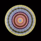 LIGHT REFLEX - ROTATION 4, 1966-2016
