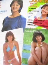 【切り抜き】北原佐和子 約35ページ ピンナップ1枚 アイドル時水着など