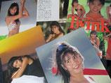 【切り抜き】立花理佐 20ページ アイドル 水着あり