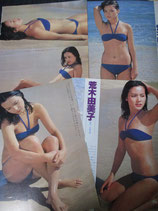 【切り抜き】荒木由美子 約25ページ