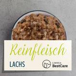 Limnea BestCare Reinfleisch Lachs - 10x 500g