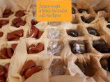 Améthyste, cristal de quartz fumé, oeil de tigre à partir de 2 euros