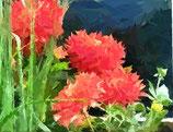Bestellformular Blumenbilder 362 - 385