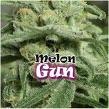 MELON GUM - DR UNDERGROUND