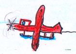 Amphibienflugzeug vom Typ Bäh-16
