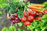 Große Salatbox