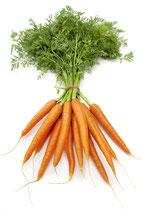 Karotten (Bund)