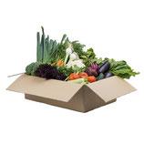 Kleine Gemüsebox