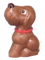 Schoggi Hund