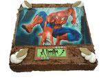 Torte für Kindergeburtstag 24x24cm