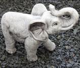 Elefanten stehend