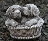 Hundekorb Betonguß