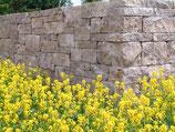 Jura Rebmauerwerk