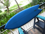 """Rich Pavel Twin Keel Fish 5'6"""" Greenroom 50th Anniversary """"Limided Edition"""""""