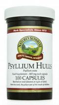 Psyllium Hulls (Flohsamen Schalen)