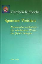Garchen Rinpoche, Spontane Weisheit, Mahamudra entdecken - die erhellenden Worte des Jigten Sumgön