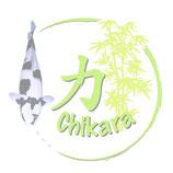 CHIKARA Basic Hochleistungsfutter 4/5mm Sinkend