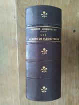 """""""Les fleurs de pleine terre"""" de Vilmorin-Andrieux"""
