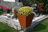 Pflanzenkasten EASY K500