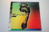 Various Artists - What's Up Mix-It: Mo' DJ's Under A Groove