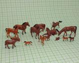 15 Tiere für den Bauernhof Pferde Fohlen