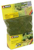 Noch 07072 Master-Grasmischung Sommerwiiese