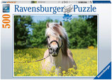 Ravensburger 15038 Pferd Rapsfeld Puzzle