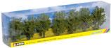 Noch 25088 Laubbäume, 7 Stück