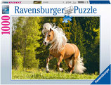 Ravensburger 15009 Pferdeglück