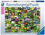Ravensburger 15991 99 Kräuter und Gewürze