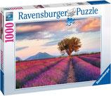 Ravensburger 16724 Lavendelfeld