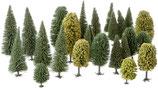 Noch 26811 Mischwald, 25 Bäume