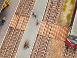 Noch 14304 Gleisübergang