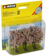 Noch 25112 Obstbäume, rosa blühend