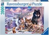 Ravensburger 16012 Wölfe im Schnee