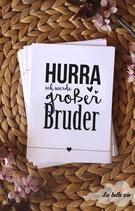"""10 Meilensteinkarten """"Ich werde großer Bruder"""" 10,5 x 14,8 cm"""