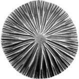 - Mushroom Cap
