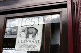 "Postcard ""Lost Elephant"""