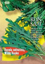 Salat 'Wilde Rauke' (Bio-Saatgut, AT-BIO-301)